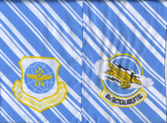 40-AS-C-130J-Dyess-AFB-Heritage-side-A.png