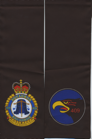 RCAF-429-TFS-CF-18-CFB-Cold-Lake-side-A.png