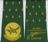 22-ARS-T-38A-Mt-Home-AFB-side-A.png