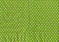 Unknown-Green-Polka-Dot-TCS.png